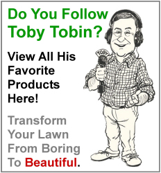 Toby Tobin's favorites